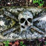 Skull and Crossbones Marker