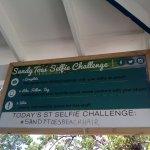 Sandy Toes Selfie Challenge