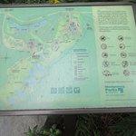 Maps of the garden