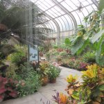 Conservatory (fee to get in) and Butterfly Garden