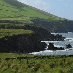 rugged Irish coast