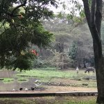 Photo of Mount Meru Game Lodge & Sanctuary