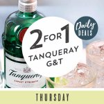 All Day Every Thursday Tanqueray Gin & Tonic 241