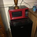 Fridge microwave