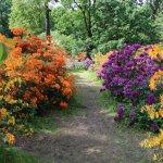 Photo of Botanisches Garten des Universitaets