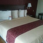 Photo de Red Roof Inn Atlanta - Norcross