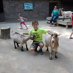 Tyler with goats!