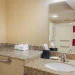 Accessible Suite Bathroom - Vanity