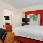 Two-Bedroom Bi-level Suite - Lower Bedroom