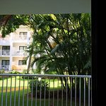 Room 1106: View from Balcony