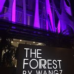 The Forest by Wangz Foto