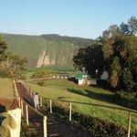 Photo of Waipio Valley Lookout