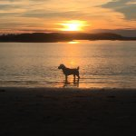 Taking photos of Tofino sunsets never get old. These were taken on Mackenzie Beach which is the
