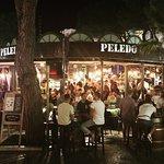 Photo of Bar Peledo