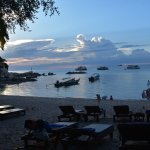 Photo of Sensi Paradise