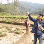 Foto de Kampung Cai Ranca Upas