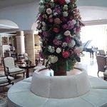 Foto van Hotel Candido