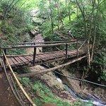 Photo of Pam Bok Waterfall