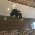 Photo de The Lonely Tree Cafe