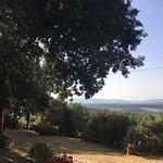 Photo of Agriturismo La Collina dei Lecci