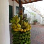 Bananen zur Selbstbedieung;-)