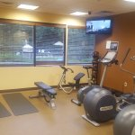 Fitness area has a few treadmills, free weights and cable machine.