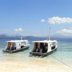 Murex Dive Resort Foto