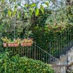 Photo of Antico Borgo Agriturismo B&B
