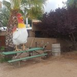 Giant Chicken as signpost to cafe. It is how you will find it as the restaurant is behind shrubb