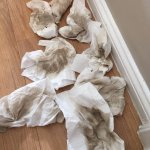 Dirty clothes from cleaning the kitchen floor