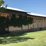 LOVED the vines outside of Grande River Vineyards building