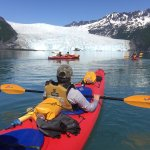 Kayak towards the base of Aialik Glacier