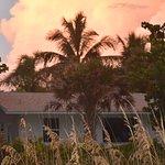 Foto de Blue Dolphin Cottages