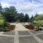 U.S. National Arboretum Foto