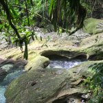 Photo of Reach Falls