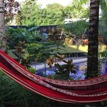 one of several hammocks to relax in.