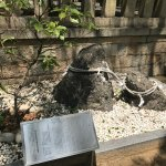 Photo of Minatogawa Shrine
