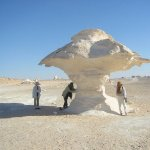 The white desert in Bahariya Oasis, one of the most famous oasis in Egypt!