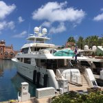 Just outside the Million Dollar boats are an unexpected attraction