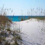 Photo of Four Points by Sheraton Destin- Ft Walton Beach