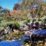 Himeji Japanese Garden in Adelaide, Australia