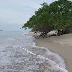 Más de la belleza natural del sitio, no tuve en cuenta la marea, ojo