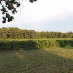 Amazing vineyard!