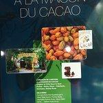 La Maison du Cacao Photo