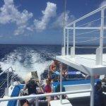 Photo of Fury Catamarans - Tours