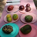 Billy Tea Safaris - Exotic Tropical Fruits