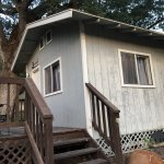 Cabin No. 5 (2 beds, 1 bath, full kitchen)