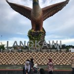 Biggest eagle in South east asia