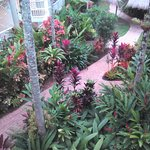 Photo de Cairns Beach Resort