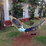 RElaxing hammock to snooze all day